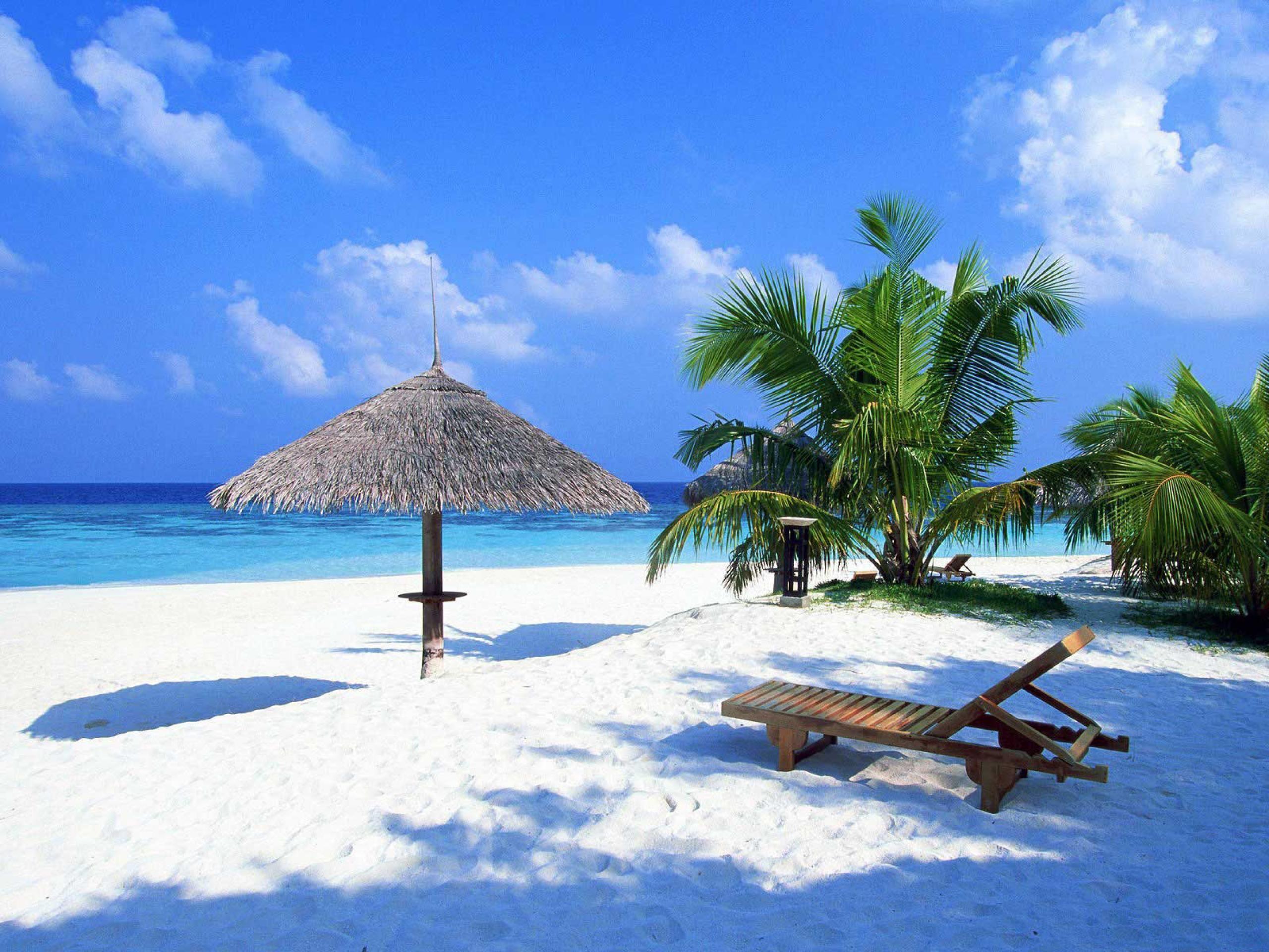 Tropical Beach Vacation Playa Del Carmen Cancun Mexico