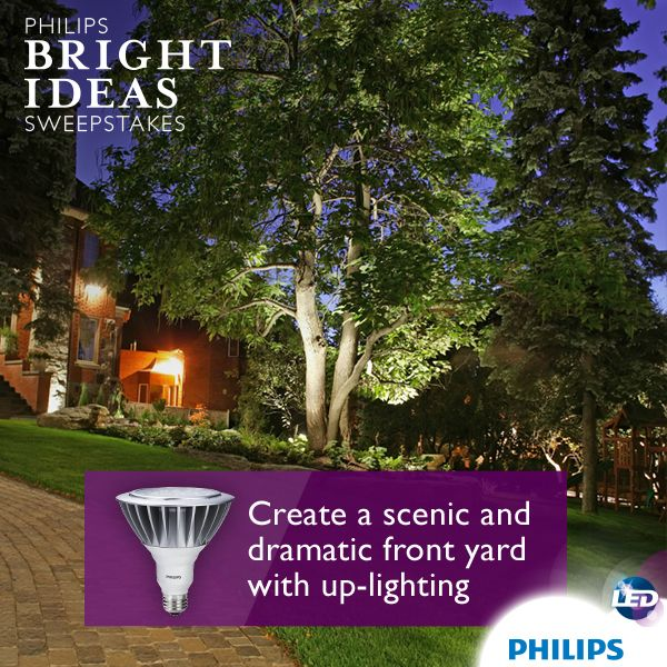 Make Your Front Yard The Envy Of Your Neighbors By Up Lighting Your Trees To Create Splashes Of Ligh Outdoor Flood Lights Led Outdoor Flood Lights Flood Lights