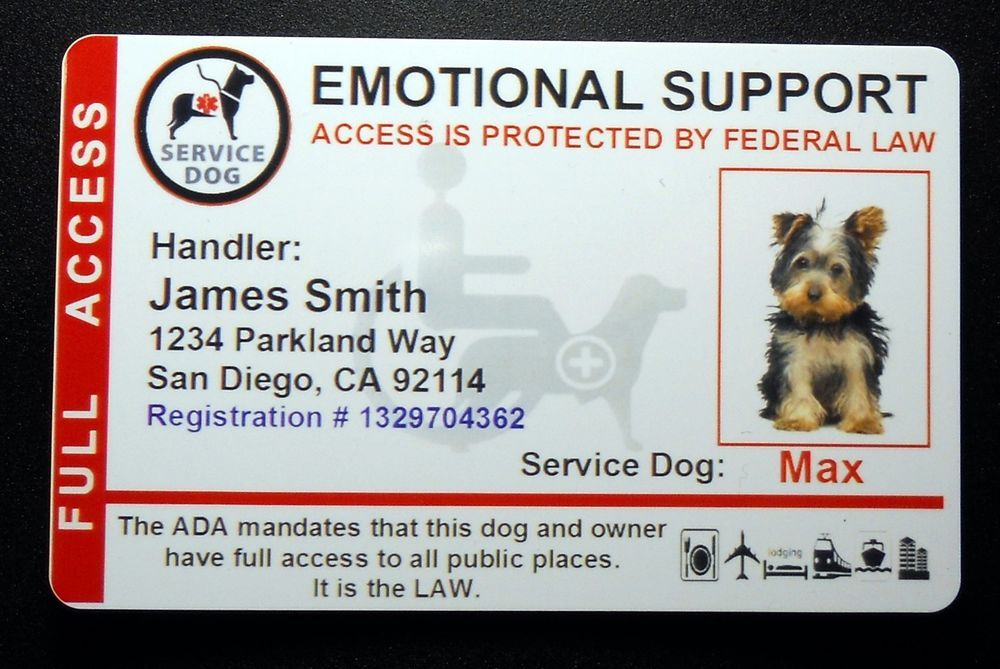 Holographic Emotional Support Animal Id Card Service Dog Id Badge 8