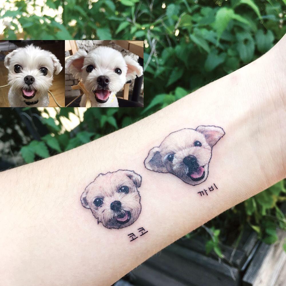 Tattoo artist Yammy color and black and grey minimalistic pets tattoo | Seoul Korea | #inkpplcom artist #minimalistic #realistictattoo #style #shopping #styles #outfit #pretty #girl #girls #beauty #beautiful #me #cute #stylish #photooftheday #swag #dress #shoes #diy #design #fashion #Tattoo