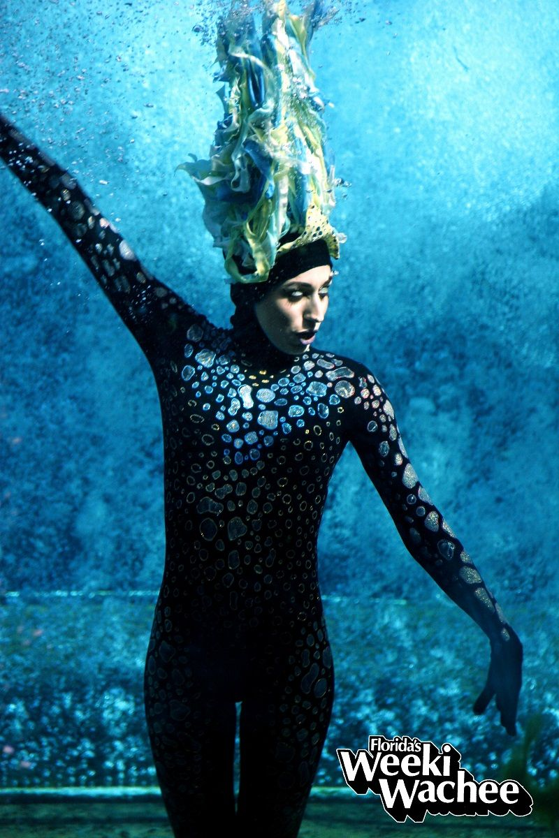 Sea Witch Little Mermaid