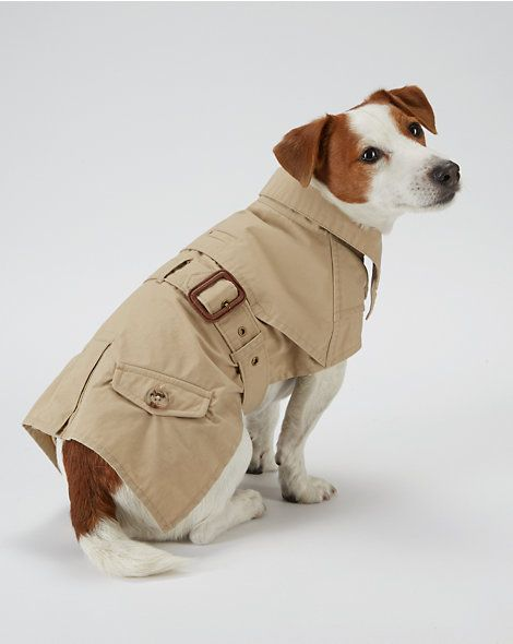 Dog Trench Coat For The Pet Home Ralphlauren Com Cool Things