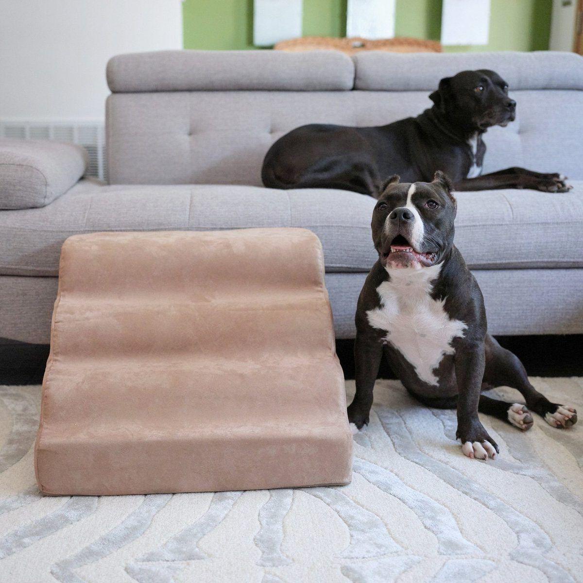 Companion ramp dog ramp dog ramp for bed dog bed