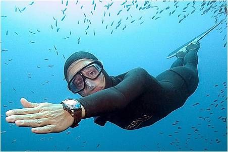 Breath Hold Free Diving Women An Average Free Diver Can Hold Their Breath For Around