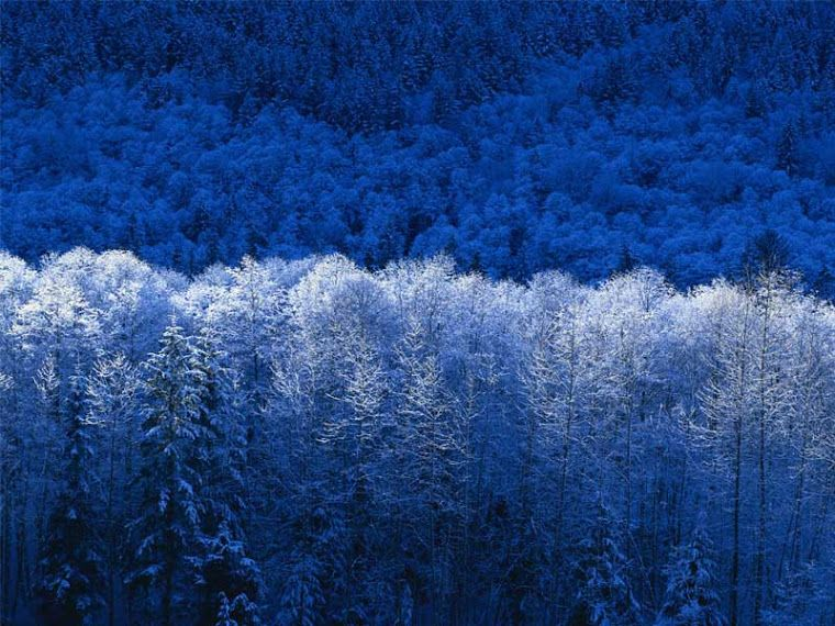 Lapland, Finland  -  -  -  Talvi maisema