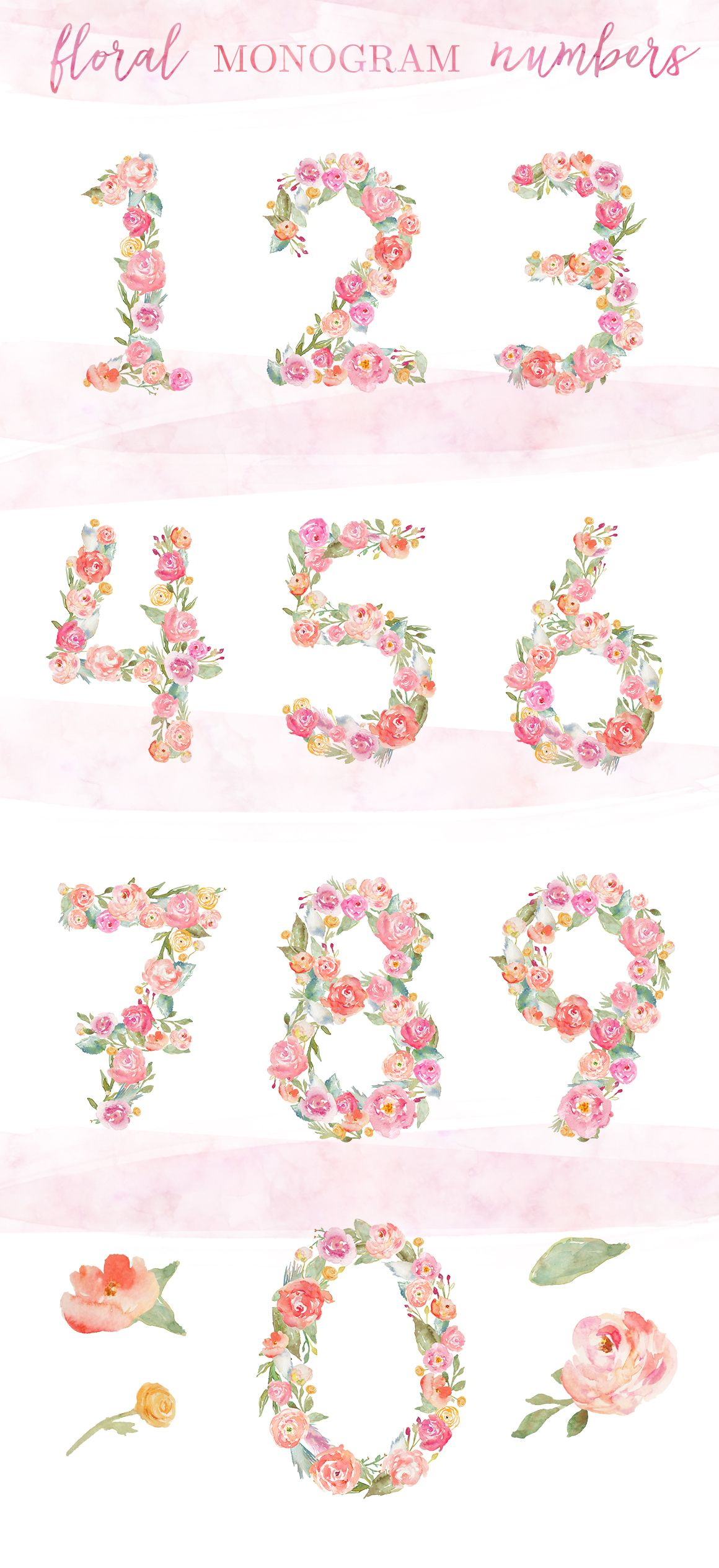 Watercolor Flower Numbers Watercolor Flowers Floral Flower