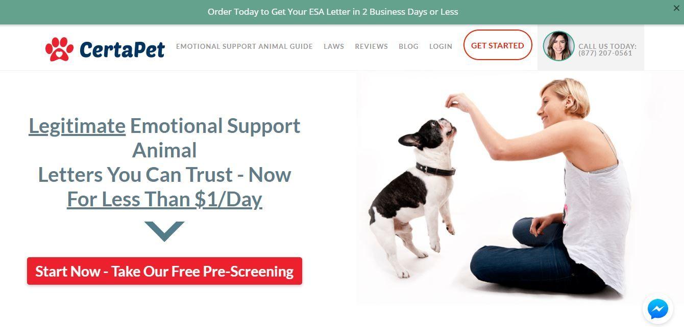 Amazing Pet Blogs! Legitimate Emotional Support Animal