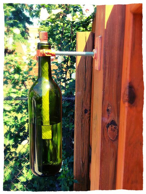 Diy Wine Bottle Tiki Torches Built With Plumbing