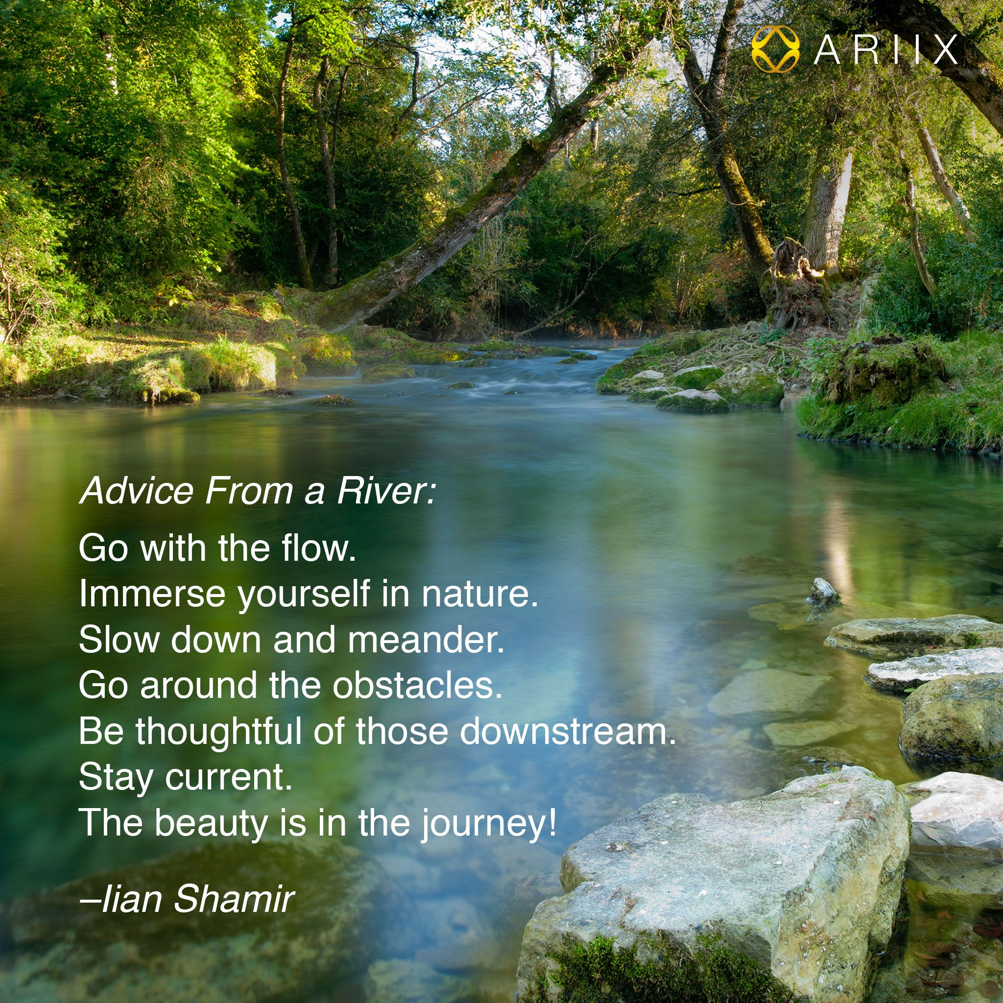 Image result for nature quote for rivers