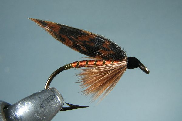 American march brown wet fly fishing flies pinterest for Wet fly fishing