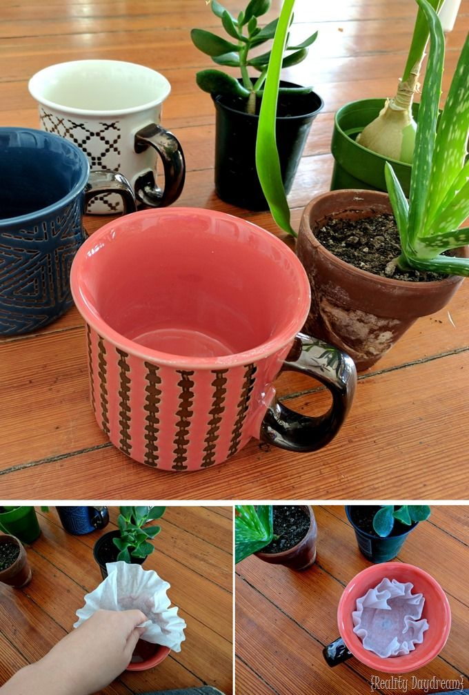 Make A Mug Into A Planter By Drilling Drainage Holes With A Diamond Bit Plant Pot Diy Planting Pots Ceramic Pots