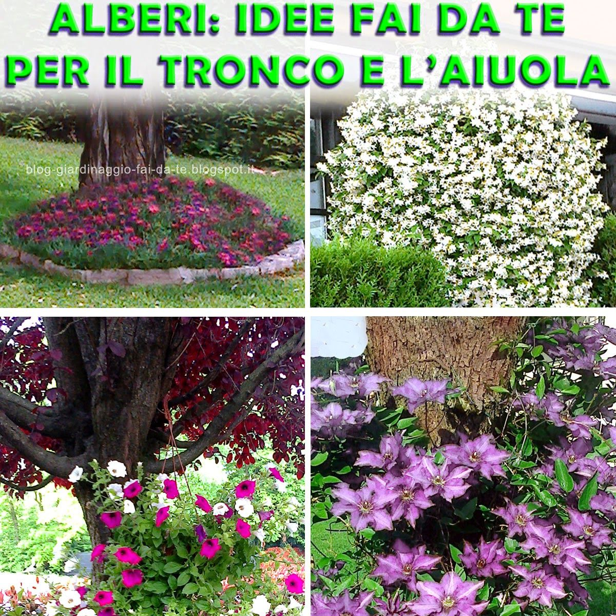 Il blog del giardinaggio fai da te consigli facili per