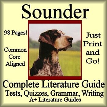 Pictures Of Sounder The Dog