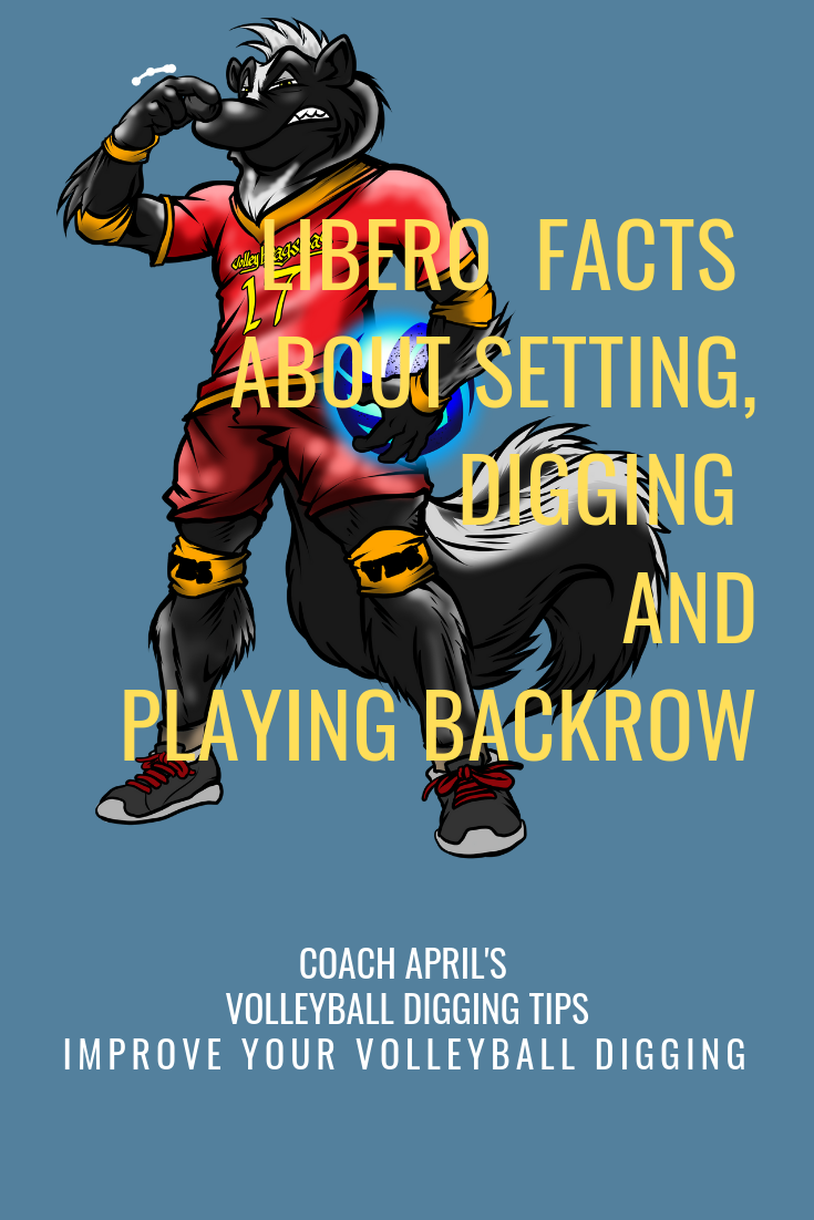 Volleyball Libero Facts Defensive Rules Responsibilities And History Libero Volleyball Coaching Volleyball Volleyball