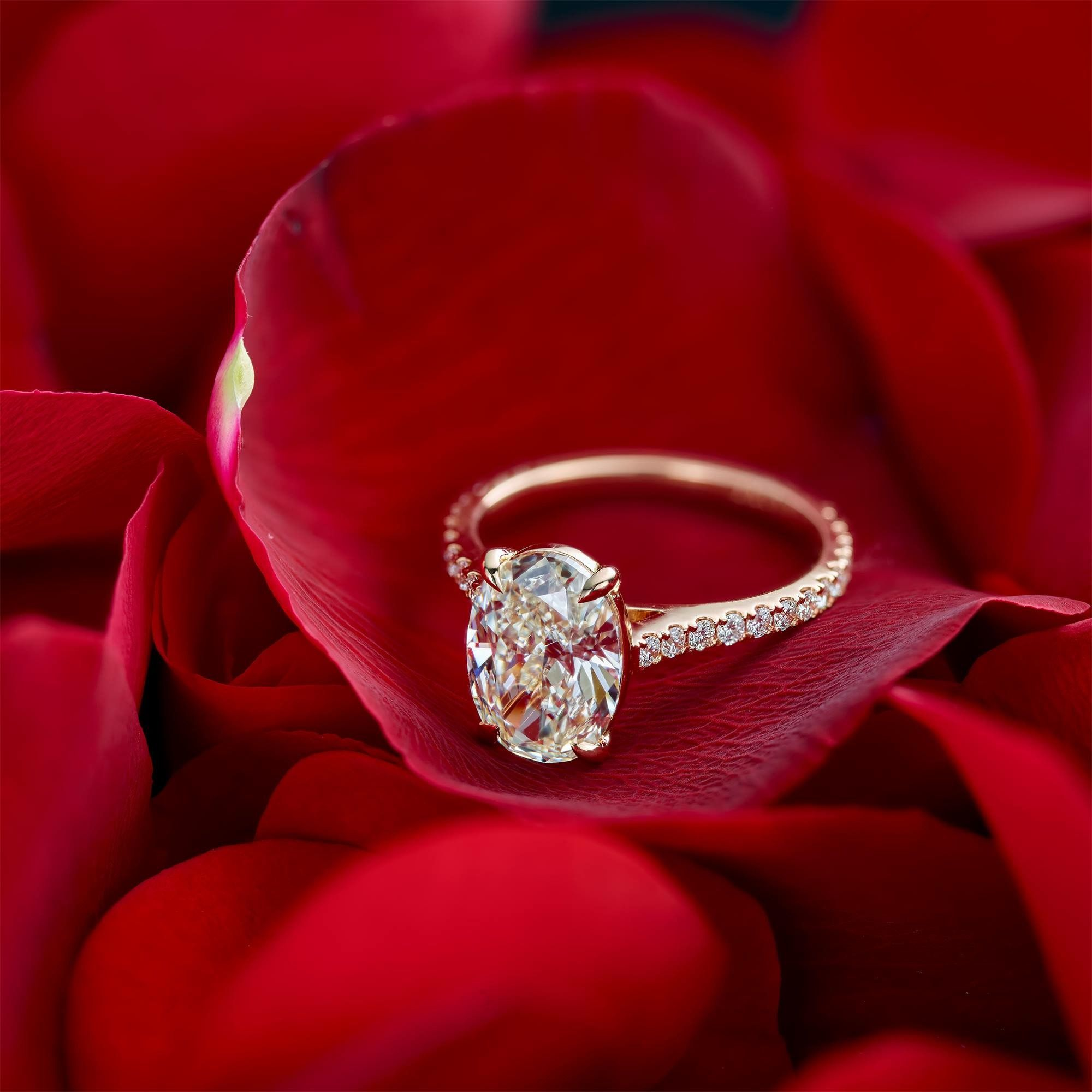 Pin by Zaza on Jewelled Pleasures Rose gold oval