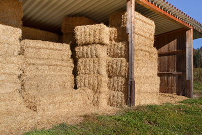 A Guide to Growing, Harvesting and Baling Hay