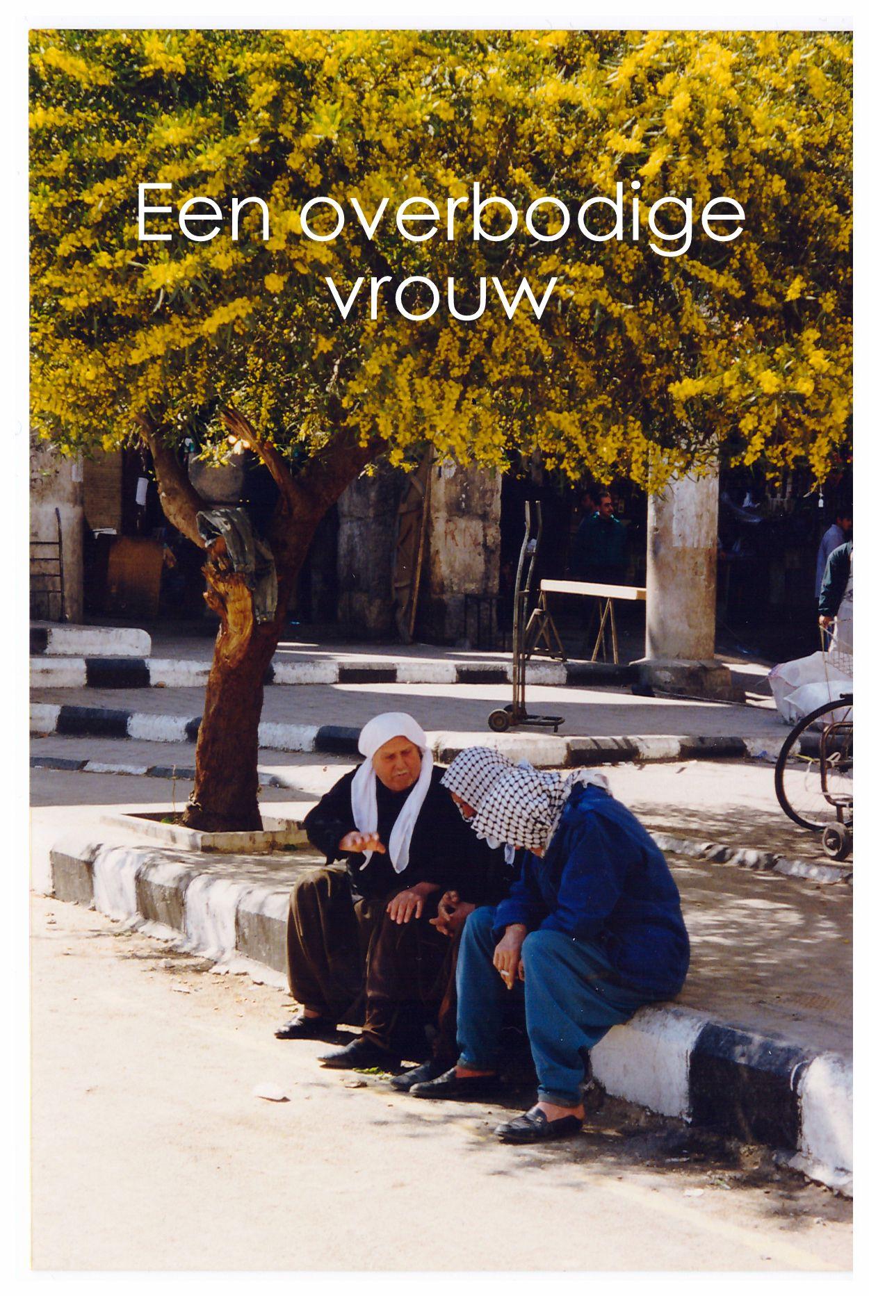 De van oorsprong Libanese auteur Alameddine heeft een hartverscheurende roman geschreven die zich afspeelt te midden van de verschrikkingen van Beiroet. Een adembenemend portret van een teruggetrokken vrouw die lijdt aan een 'late-life crisis'. Aaliya is goddeloos, vaderloos, kinderloos en gescheiden. Ze is de spreekwoordelijke appendix van haar familie. Haar grote en enige liefde is de literatuur.