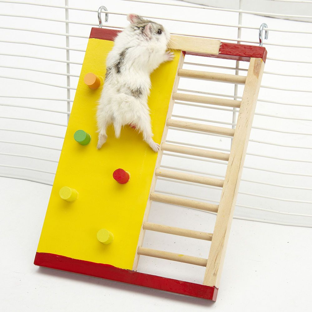 Hamster Climbing Ladder Made From Small Pet Safe Natural Pine Wood Full Of Natural Wood Fragrance Adorable Delicate Appearanc With Images Hamster Toys Pet Rats Pet Toys