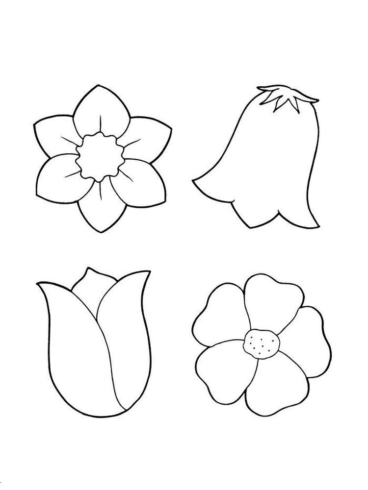 Free Spring Flowers Coloring Pages Everyone Dreams Of Spring Flowers During Winter And Loo Flower Coloring Sheets Flower Coloring Pages Simple Flower Drawing