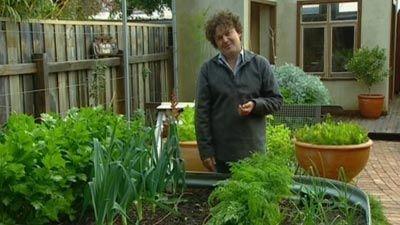 Gardening Australia 02 02 2008 Creating A Small Garden Raised Garden Beds Small Garden Raised Garden