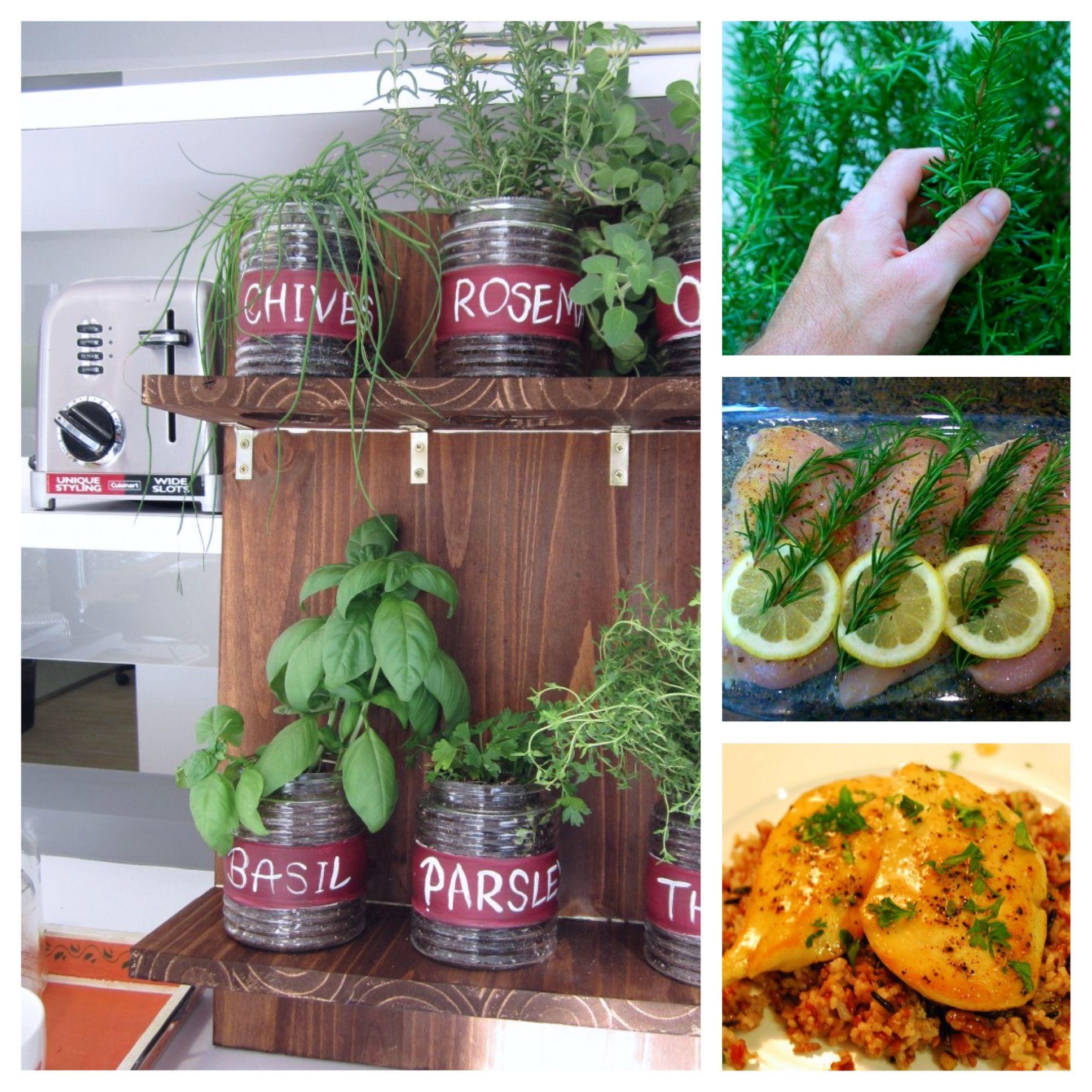 Simple Kitchen Garden: Grow An Indoor Garden With Fresh Herbs