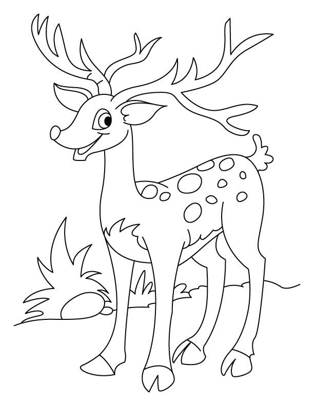 Christmas Embroidery Patterns Deer Coloring Pages Colorful
