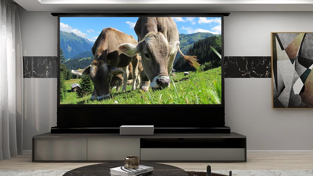 Ust Projector Screen From Vividstormscreen Projector Screen Best Home Theater Projector Home Theater Projectors