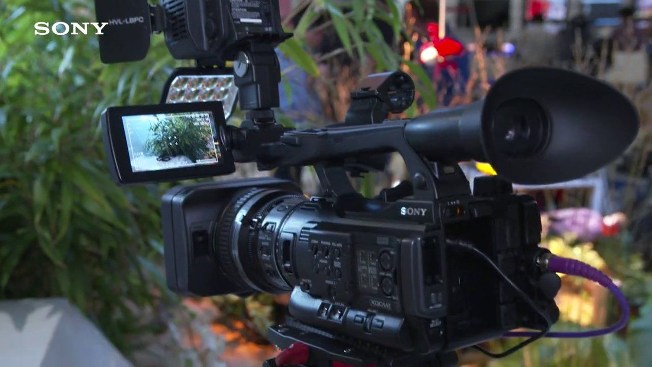 Sony Professional IBC 2014 Catalyst to replace Browser