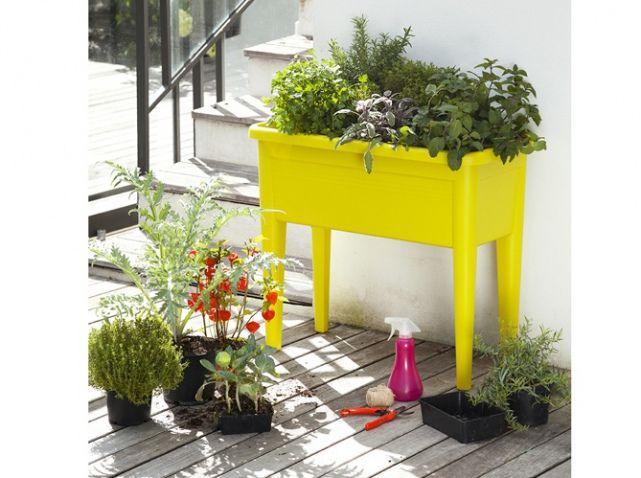 Petits potagers 16 solutions faciles fleurs et potager flowers pinterest - Truffaut jardiniere ...