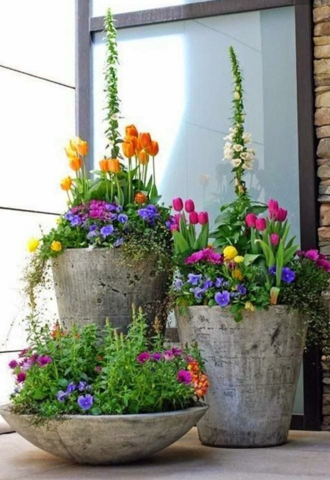 Patio garden trio Curb Appeal For Real Pinterest Gardens