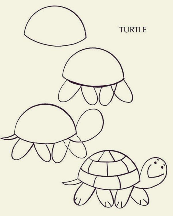 How To Draw Cute Animals 40 Examples With Images Turtle