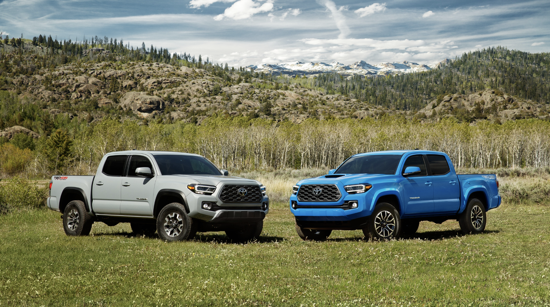 New 2020 Toyota Tacoma 2wd Trd Off Road Double Cab 5 Bed V6 At In 2020 Toyota Tacoma 2017 Toyota Tacoma Toyota Tacoma Trd