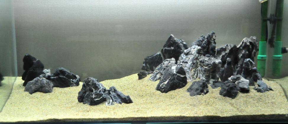 Seiryu Stones Information And Where To Buy Aquascape Aquascape Design Aquascape Aquarium