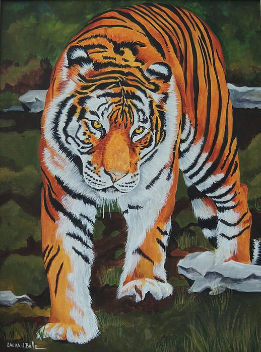 beautiful tiger by very talented artist Laura Bolle