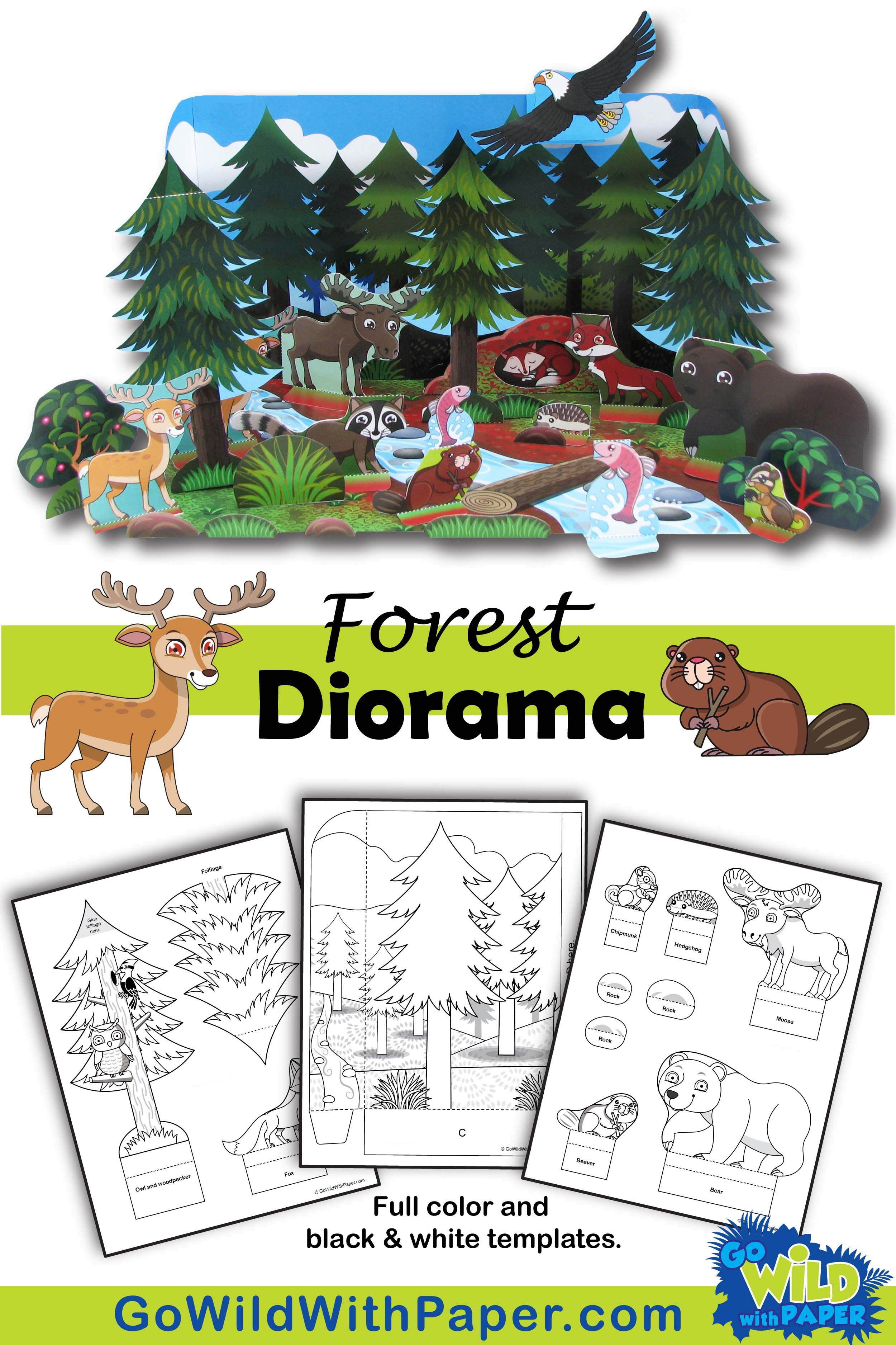 Make An Animal Habitat Diorama Of A Coniferous Forest With