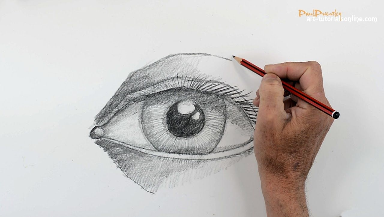 How To Draw A Human Eye Step By Drawing Pinterest Simple Diagram The Structure Of