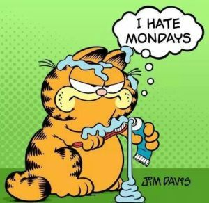 Pin On Garfield I Hate Mondays Quote