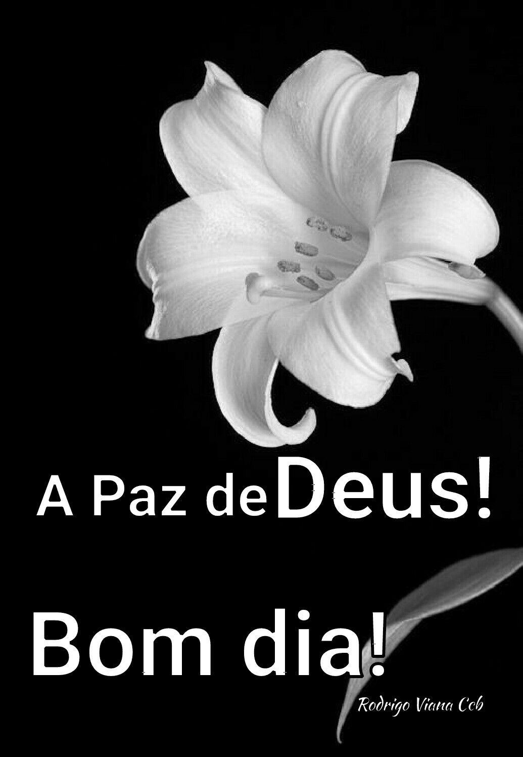 A Paz De Deus Com Imagens Mensagens De Deus Ccb Mensagem