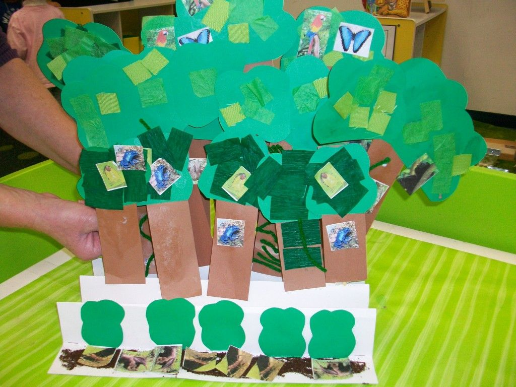 A Cute Idea A Class Produced Replica Of The Layers Of The Rainforest Each Child Made
