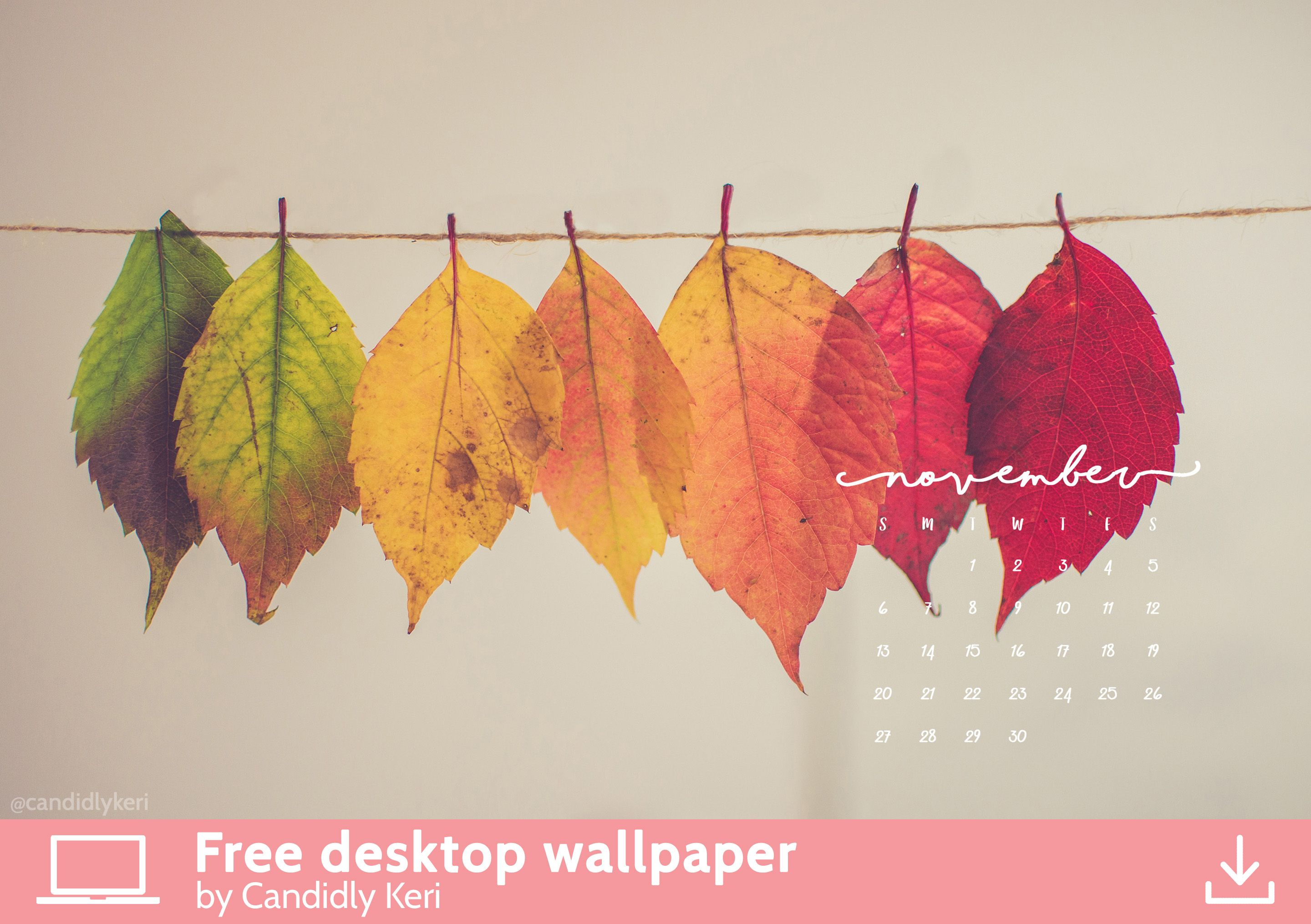 Pretty Leaf Photography Colorful Leaves Yellow Orange Red November Calendar 2016 Wallpaper You Can Download For Free On The Blog Any Device Mobile
