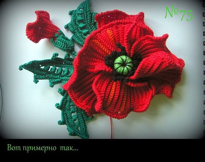 Big Crochet Poppy Free Pattern Step By Step Flowers Pinterest