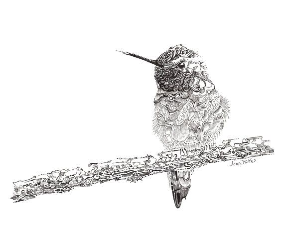Fine Line Art : Hummingbird illustration fine line artwork black and white
