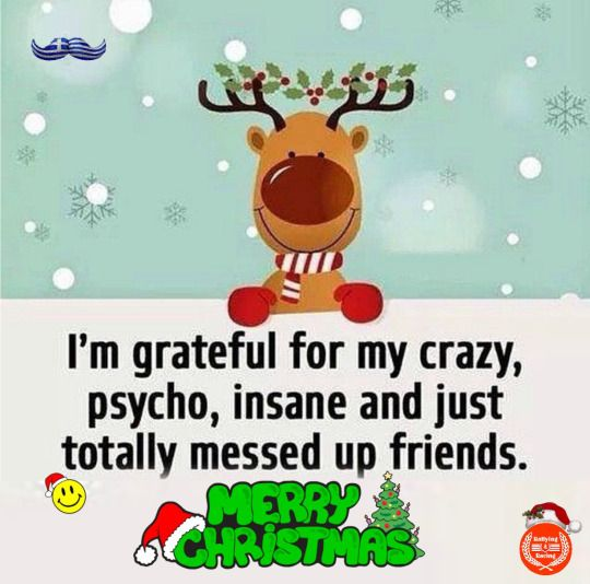 im grateful for my crazy psycho insane and just totally messed up friends normal people scare the crap out of me - Best Friend Christmas Quotes