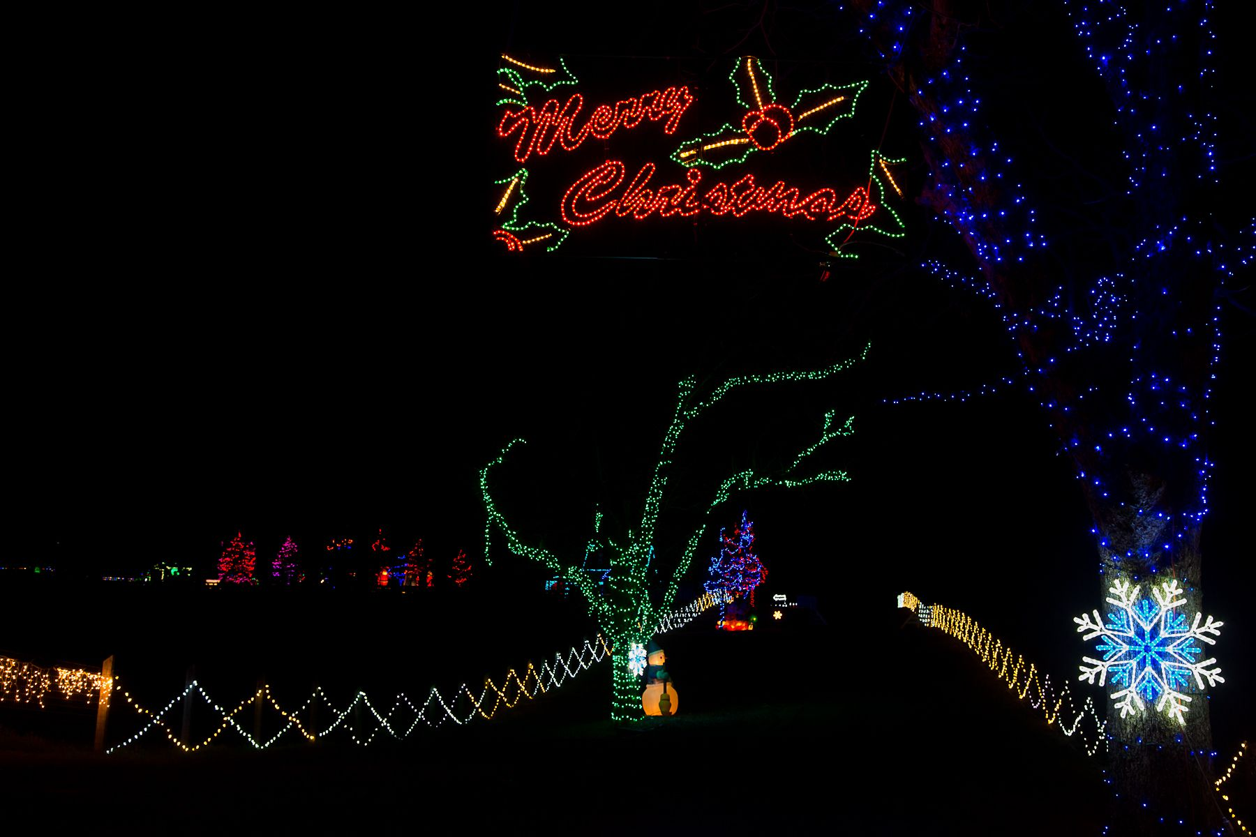Country Christmas In Lights At The Rock Ranch In Georgia