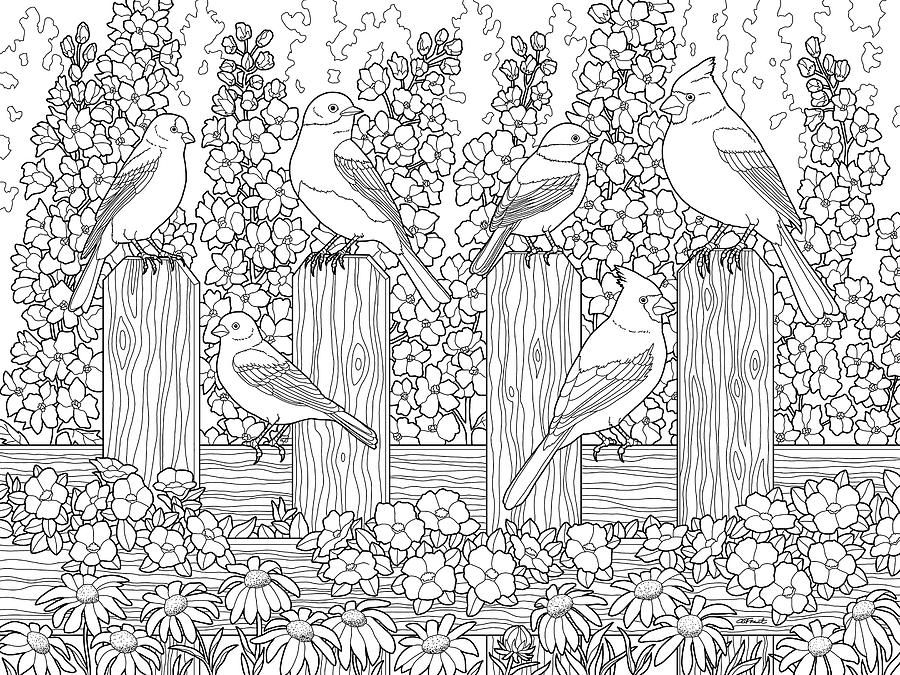 Flower Garden Coloring Pages Printable Design