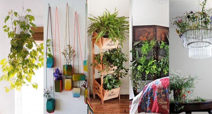Nos encantan las plantas se nota verdad os traemos ideas creativas y originales para - Decorar con plantas el salon ...