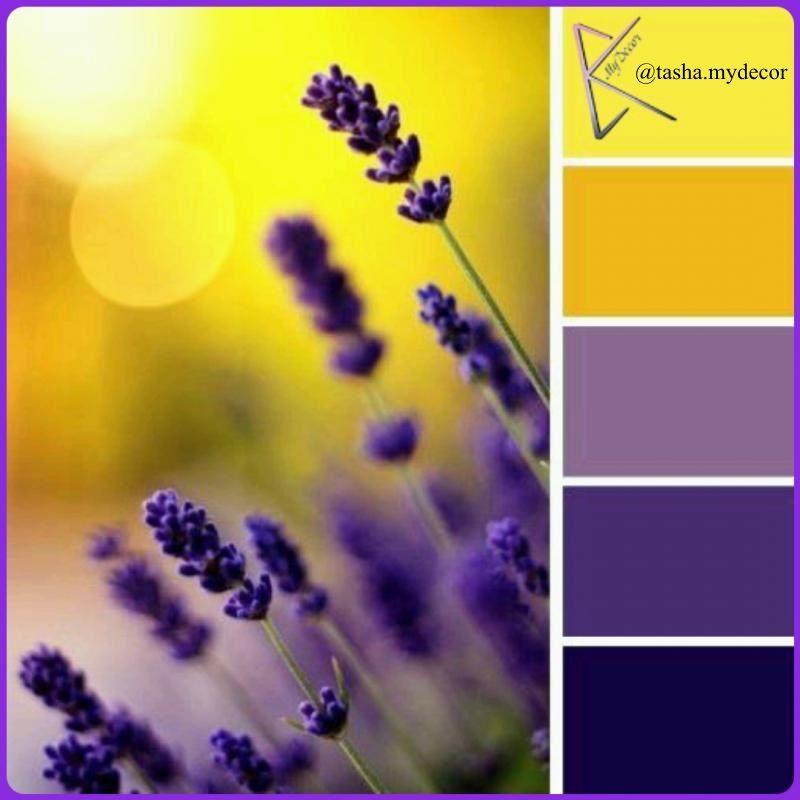 harmonie des couleurs les couleurs decoration interieur maison aubergines chromatique parme intrieur maison palette de couleur violettes - Harmonie Des Couleurs Dans Une Maison