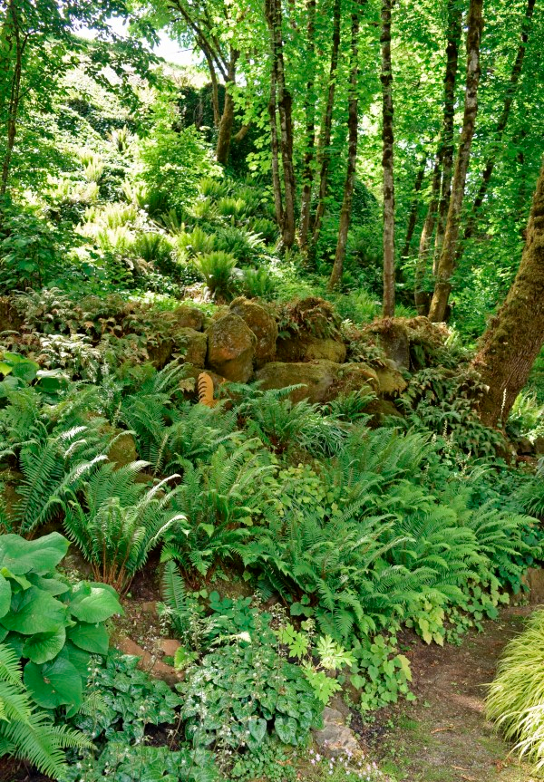 The Many Garden Design Aesthetics of the Pacific Northwest - Garden Therapy