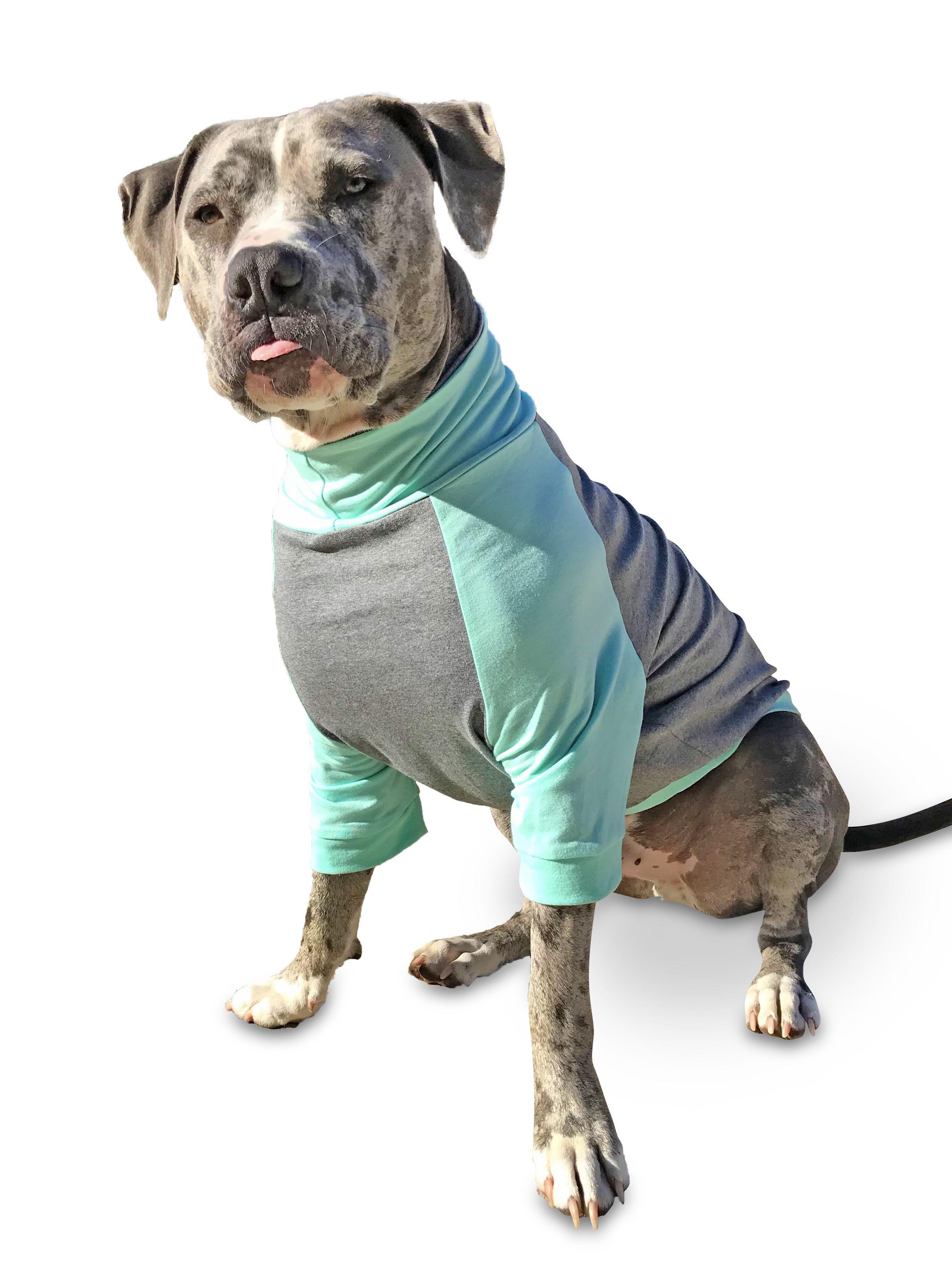 Pin On Tooth Honey Large Dog Clothing