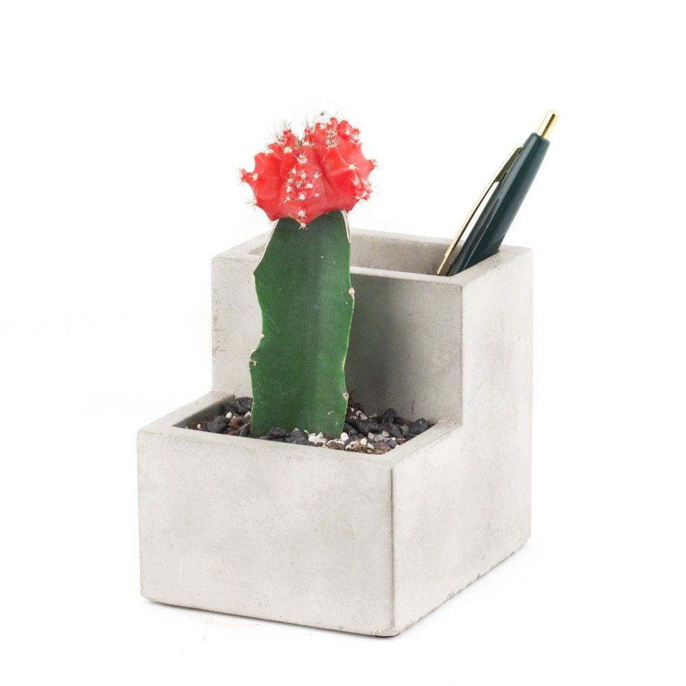 Schreibtisch Blumentopf Usb Lampe Sukkulenten Pflanzen Und Stiftehalter